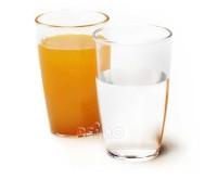 Polycarbonat Gläser Saft 0,27L 2 Stk.