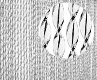 Rideau de porte SARA, 100% PVC, 60x190cm, noir