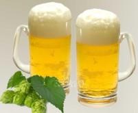 Kunststoff Gläser Bierkrug 2er-Set 0,5l Polycarbon at